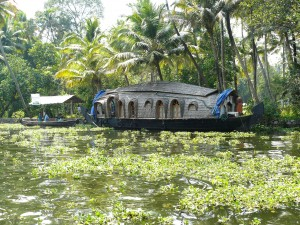 Backwaters Riceboat